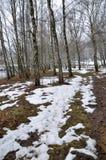 Το ελατήριο thaw_3 Μαρτίου Στοκ φωτογραφίες με δικαίωμα ελεύθερης χρήσης
