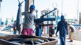 Το ελλιμενισμένο λιμάνι αλιείας Chenggong αλιευτικών σκαφών αφαιρεί το goo αλιείας Στοκ εικόνα με δικαίωμα ελεύθερης χρήσης