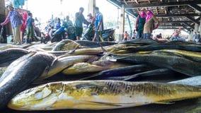 Το ελλιμενισμένο λιμάνι αλιείας Chenggong αλιευτικών σκαφών αφαιρεί το goo αλιείας Στοκ Φωτογραφία