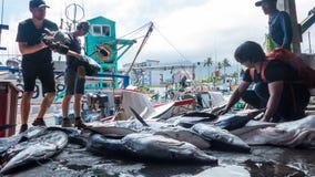 Το ελλιμενισμένο λιμάνι αλιείας Chenggong αλιευτικών σκαφών αφαιρεί το goo αλιείας Στοκ φωτογραφία με δικαίωμα ελεύθερης χρήσης