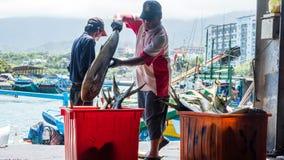 Το ελλιμενισμένο λιμάνι αλιείας Chenggong αλιευτικών σκαφών αφαιρεί το goo αλιείας Στοκ Εικόνες