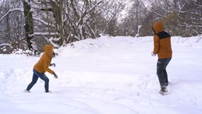 Το ζεύγος έχει την πάλη χιονιών φιλμ μικρού μήκους