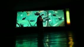 Το ζεύγος κάνει selfie μαζί στο oceanarium ενάντια στον τοίχο γυαλιού ενυδρείων φιλμ μικρού μήκους