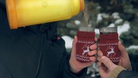 Το ζεύγος πίνει το καυτό τσάι στο δασικό, όμορφο χειμερινό τοπίο με τα χιονώδη δέντρα έλατου φιλμ μικρού μήκους