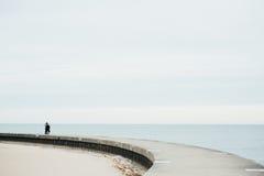 Το ζεύγος που περπατά στη γέφυρα στη λίμνη Στοκ Εικόνες