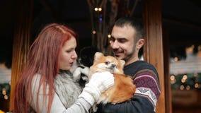 Το ζεύγος των εραστών αγκαλιάζει με τα σκυλιά ενός Cutie Έχουν την καλή διάθεση από κοινού Ντυμένος θάλαμος, φω'τα Χριστουγέννων  φιλμ μικρού μήκους