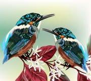 Το ζεύγος των ζωηρόχρωμων πουλιών κάθεται σε έναν κλάδο Στοκ εικόνα με δικαίωμα ελεύθερης χρήσης