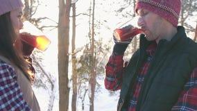 Το ζεύγος των νέων το χειμώνα ντύνει το καυτό θερμαμένο κρασί κατανάλωσης στο ηλιοβασίλεμα στο χειμερινό δάσος, χειμερινές διακοπ απόθεμα βίντεο