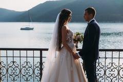 Το ζεύγος Newlyweds, η νύφη και η εκμετάλλευση νεόνυμφων δίνουν εξετασμένος το ένα το άλλο μάτια ` s σε ένα υπόβαθρο λιμνών Χαριτ στοκ εικόνες με δικαίωμα ελεύθερης χρήσης