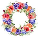 Το ζωηρόχρωμο στρογγυλό πλαίσιο του watercolor ανθίζει, ρόδι, σταφύλια, πορτοκάλι, σύκα, ορχιδέα απεικόνιση αποθεμάτων