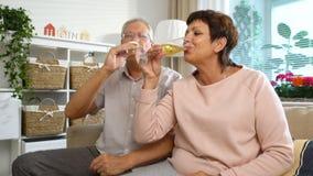 Το ηλικιωμένο ζεύγος σύνδεσε με τους φίλους χρησιμοποιώντας την τηλεοπτική κάμερα και την κατανάλωση CHAMPAGNE κλήσης lap-top φιλμ μικρού μήκους