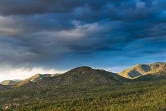 Το ηλιοβασίλεμα φωτίζει τους δασικούς ντυμένους λόφους πεύκων κάτω από έναν δραματικό ουρανό των σκοτεινών σύννεφων στοκ εικόνες
