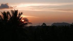 Το ηλιοβασίλεμα χρονικού σφάλματος, ανατολή στη ζούγκλα, σκιαγραφίες του φοίνικα, φωτεινά cirrus καλύπτει φιλμ μικρού μήκους