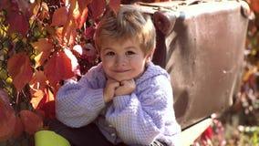 Το ηλιόλουστο αγόρι απολαμβάνει τον όμορφο καιρό E Το μικρό παιδί κάθεται στο πάρκο και τα όνειρα Απολαύστε τον όμορφο απόθεμα βίντεο