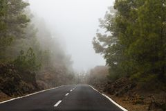 Το ηφαίστειο Teide περιβάλλεται από τις ερυθρελάτες Στοκ Φωτογραφία