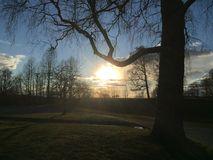 Το ηλιοβασίλεμα λάμπει Στοκ φωτογραφίες με δικαίωμα ελεύθερης χρήσης
