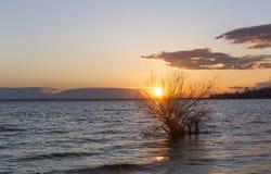 Το ηλιοβασίλεμα πέρα από τα σύννεφα ουρανού ποταμών ποτίζει το δέντρο Στοκ Φωτογραφίες