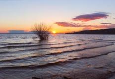 Το ηλιοβασίλεμα πέρα από τα σύννεφα ουρανού ποταμών ποτίζει το δέντρο Στοκ εικόνες με δικαίωμα ελεύθερης χρήσης