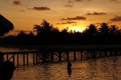 Το ηλιοβασίλεμα παραλιών νησιών των Μαλδίβες κολυμπά Στοκ Φωτογραφίες