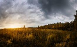 Το ηλιοβασίλεμα φωτίζει τον τομέα και το δάσος φθινοπώρου σε έναν θυελλώδη ουρανό βροντής στοκ εικόνα με δικαίωμα ελεύθερης χρήσης