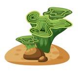 Το θαλάσσιο πράσινο φύκι αλγών, φυτεύει υποβρύχιο, απομονωμένος στο άσπρο υπόβαθρο, διάνυσμα, ύφος κινούμενων σχεδίων απεικόνιση αποθεμάτων