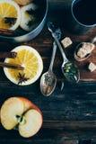 Το θερμαμένο ζεστό ποτό κρασιού με τα εσπεριδοειδή, το μήλο και τα καρυκεύματα casserole και το FIR αργιλίου διακλαδίζονται στο σ Στοκ εικόνες με δικαίωμα ελεύθερης χρήσης
