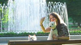 Το θηλυκό θέτει για το selfie με δύο χαριτωμένα κατοικίδια ζώα σκυλιών κοντά στην πηγή πάρκων o απόθεμα βίντεο