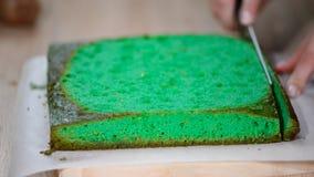 Το θηλυκό χέρι με ένα μαχαίρι κόβει το πράσινο κέικ σφουγγαριών απόθεμα βίντεο