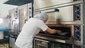 Το θηλυκό ψήνει στην εμπορική κουζίνα - η γυναίκα βάζει το ψήσιμο στο φούρνο φιλμ μικρού μήκους