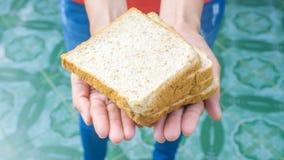 Το θηλυκό ή οι γυναίκες χεριών με τα ψωμιά/μερίδιο, δίνει την έννοια Στοκ φωτογραφία με δικαίωμα ελεύθερης χρήσης