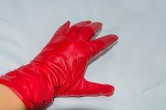 Το θηλυκό παραδίδει τα κόκκινα γάντια δέρματος στο άσπρο υπόβαθρο Στοκ Φωτογραφίες