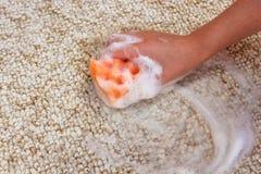 Το θηλυκό χέρι καθαρίζει τον τάπητα στοκ φωτογραφία με δικαίωμα ελεύθερης χρήσης