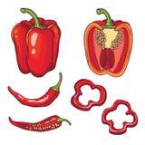 Το διάνυσμα έθεσε με τα λαχανικά: πιπέρια στο λευκό Στοκ Φωτογραφία