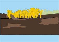 Το διάνυσμα του μανιταριού κίτρινο Στοκ εικόνα με δικαίωμα ελεύθερης χρήσης