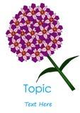 Το διάνυσμα του λουλουδιού κύκλων Purplr Στοκ Φωτογραφίες