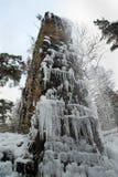 Chatsworth Aquaduct το χειμώνα, Derbyshire Στοκ εικόνα με δικαίωμα ελεύθερης χρήσης