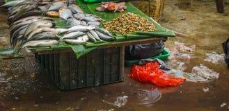 Το διάφορο είδος ψαριών πώλησε στην παραδοσιακή φωτογραφία αγοράς που λήφθηκε στην Τζακάρτα Ινδονησία Στοκ φωτογραφία με δικαίωμα ελεύθερης χρήσης