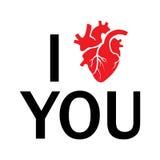 Το διανυσματικό ι σας αγαπά ανθρώπινη καρδιά Στοκ Φωτογραφίες