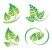 Το διανυσματικό πράσινο σύνολο φύλλων, logotype εικονίδια για το οργανικό, φυσικό, περιβάλλον αφορούσε το γραφικό σχέδιο στοκ φωτογραφία με δικαίωμα ελεύθερης χρήσης