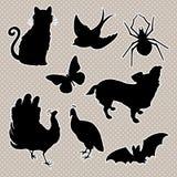 Το διανυσματικό σύνολο σκιαγραφεί τη γάτα, πουλί, πεταλούδα αραχνών, σκυλί peacock, ρόπαλο Στοκ φωτογραφία με δικαίωμα ελεύθερης χρήσης