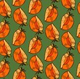 Το διανυσματικό χέρι χρωμάτισε το άνευ ραφής σχέδιο με persimmon Στην πράσινη ανασκόπηση Τελειοποιήστε για την ταπετσαρία, τυλίγο Στοκ Φωτογραφία