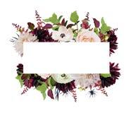 Το διανυσματικό floral ροζ σχεδίου καρτών σχεδίου αυξήθηκε burgundy ντάλια flowe ελεύθερη απεικόνιση δικαιώματος
