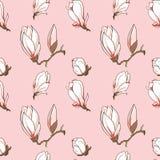 Το διανυσματικό magnolia ανθίζει το άνευ ραφής σχέδιο Στοκ Εικόνες
