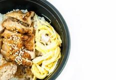 Το ιαπωνικό ρύζι τροφίμων εξυπηρετεί με το κοτόπουλο Στοκ φωτογραφία με δικαίωμα ελεύθερης χρήσης