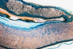 Το ιατρικό εργαστήριο προετοίμασε τη μικροσκοπική σίκαλη ρυγχωτών κανθάρων στοκ εικόνα με δικαίωμα ελεύθερης χρήσης