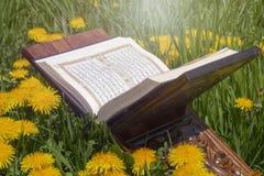 Το ιερό Quran στοκ φωτογραφίες με δικαίωμα ελεύθερης χρήσης