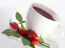 το ισχίο αυξήθηκε τσάι Στοκ Εικόνα
