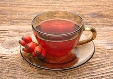 το ισχίο αυξήθηκε τσάι Στοκ φωτογραφία με δικαίωμα ελεύθερης χρήσης