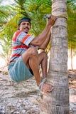 Το ισχυρό επιδέξιο άτομο αναρριχείται στο δέντρο καρύδων Στοκ Εικόνες