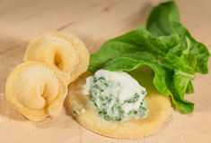 Το ιταλικό σπιτικό tortellini, ανοικτός και κλειστός, γέμισε με το τυρί ricotta και το φρέσκο σπανάκι Στοκ Εικόνες